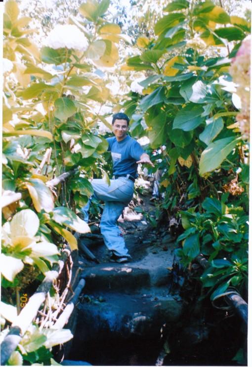 Renato en el bosque