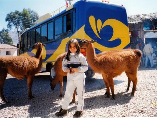 Roc�o y unas vicuñas