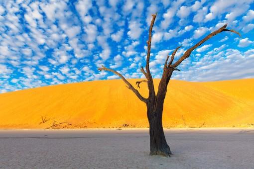 Nambia's Namib-Naukluft Park